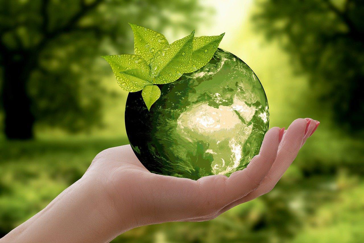 Рециклиране за първи път